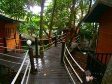 Similan islands Bungalow