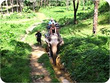 Khao Lak Tours and Excursion