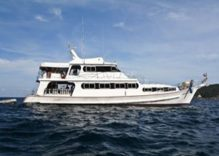 Manta Queen 6, Similan to Richelieu Rock | 4D/4N | 15 Dives