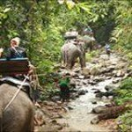 Khao Lak Jungle Trekking