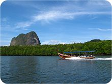 Phang-nga Tours y excursiones