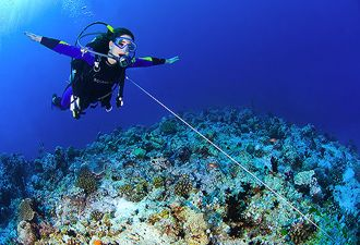 Diver with Reef Hook