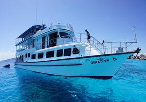 MV Camic SIMILAN NACH RICHELIEU ROCK | 4T/4N | 14 TAUCHGÄNGE