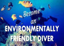 How to be an Eco diver?