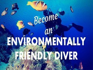 eco friendly diver