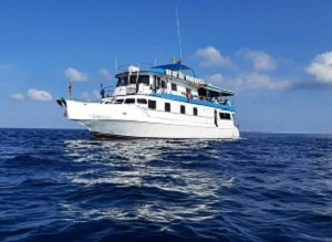 MV Sawasdee Fasai Similan islands to Richelieu Rock | 4 Days 4 Nights | 14 Dives