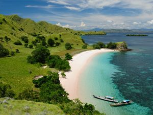 diving in komodo
